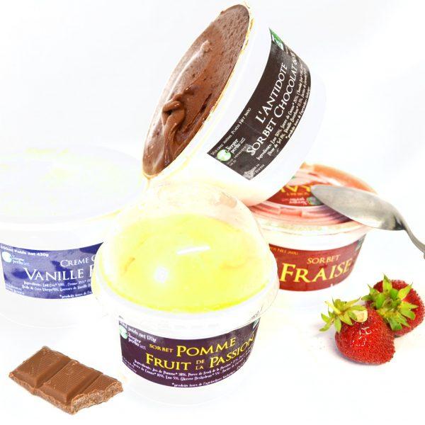 Sorbet L'antidote chocolat 66%